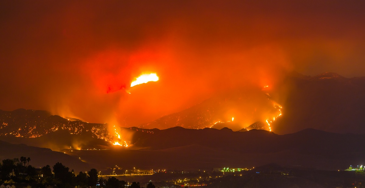 Surviving a Disaster: Business Insurance Claims for Wildfire Damage